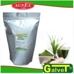 Bioaktive Zusatzstoffe