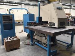 Punching LVD DELTA 1250 LB MNC 32000