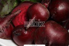 Fresh beet