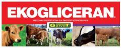 Krmná směs pro hovězí dobytek
