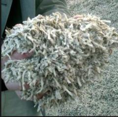 Wysłodki buraczane granulowane paszowe