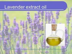 Olej z lawendy (lavender)