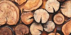 Suche drewno kominkowe (wyłącznie drewno liściaste) i opałowe najwyżej jakości na eksport