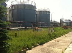 Oleje roślinne techniczne do produkcji biopaliw.