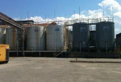 Olej rzepakowy do produkcji biodiesela.