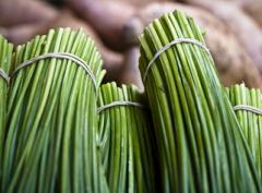 Zielona cebulka i szczypiorek