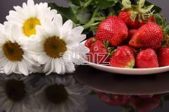Truskawki świeże Marmolada, Honey, Polka, Florens, Malwina