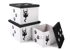 Komplet pudełek z motywem kota