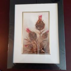 Obraz gotowy do powieszenia, w ramie, przedstawiający tematykę florystyczną: osty, dmuchawiec i czerwone kwiaty.
