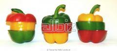 Fresh paprika for export - the minimum zakazaniye