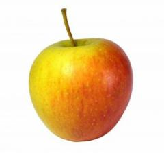 Jabłko Champion / Szampion kalibrowane i dowolnie pakowane.
