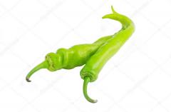 Zielona papryka chili