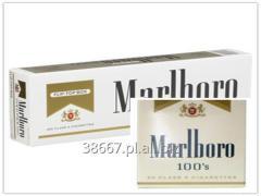 CIRCLE WORLDS Marlboro Gold light 100s