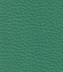 Leather, imitation leather of polyester, a
