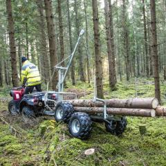 ATV лес прицепа с краном и лебедкой