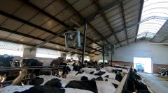 Wentylacja dla gospodarstw rolnych hodowlanych