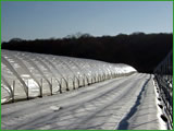 Tunnels protection telescopic harvest in the
