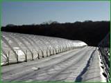 Tunele teleskopowe do zabezpieczania upraw latem i zimą.