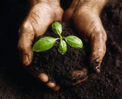 Ulepszacz gleby LAKES ENERGY