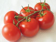 Pomidory gronowe