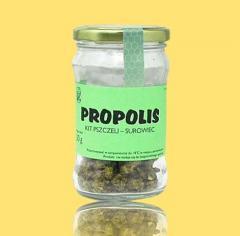 Propolis- kit pszczeli