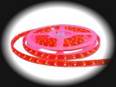 Pasek LED P-CR
