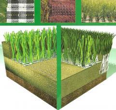 Trawa sportowa Extra grass
