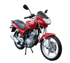 Motocykl Quipai