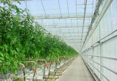 Frameworks for greenhouses