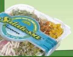 Salatessy