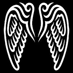 Koszulki Angel