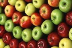 Mokre wytłoki  jabłkowe