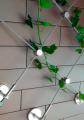Prowadzenie roślinności po elewacji budynku