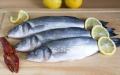 Świeże ryby. Ryby patroszone, całe, filety z ryb.