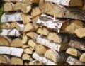 Drewno bardzo dobre do palenia; zawiera małą ilość substancji smolistych.