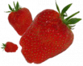 Owoce miękkie