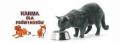 Karma mięsna dla psów i kotów