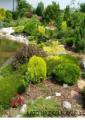 Ogród krajobrazowy skalny