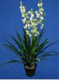 Sztuczne rośliny ozdobne