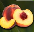 Brzoskwinie o smacznych i soczystych owocach.