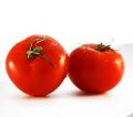 Pomidory świeże - smaczne, zdrowe i bogate w potas.