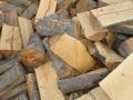 Drewno kominkowe różnych gatunków.