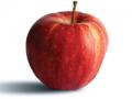 Jabłka Gala Mast