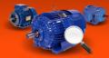 Silniki elektryczne grupy Cantoni