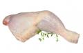 Uda z kurczaka.