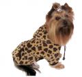 Ubranka dla psów