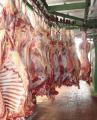 Mięso wołowe półtusze schłodzone.