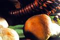 Liofilizaty - kurka w kostce