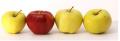 Soki jabłkowe nieklarowane