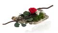 Kwiaty stabilizowane
